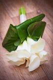 白色水芋百合婚礼花花束 图库摄影