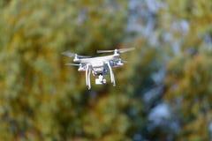 白色quadcopter寄生虫树背景 免版税库存图片
