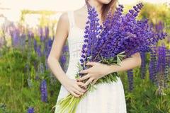 白色sundress的美丽的性感的妇女与花束在羽扇豆的手上在领域的在日落 免版税库存照片