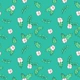 白花和绿色叶子样式 免版税库存照片