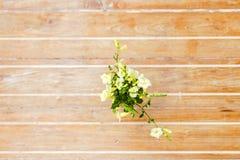 白花顶视图在木桌上的 库存图片