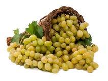 白葡萄在篮子 免版税库存图片