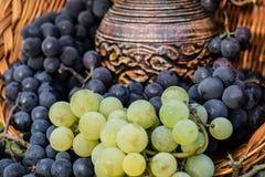 黑白葡萄束围拢的老黏土酒水罐 免版税库存图片