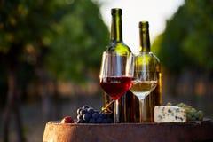 白葡萄酒和红色两块玻璃与瓶 免版税库存照片