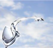 白葡萄酒飞溅在天空背景的 免版税库存图片
