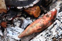 白薯烤肉 免版税库存图片