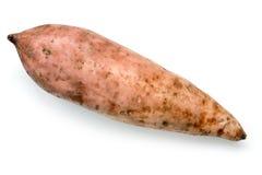 白薯被隔绝的顶视图 图库摄影