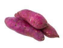 白薯 免版税库存照片