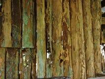白蚁关闭木头 免版税图库摄影