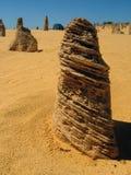 白蚁土墩。澳大利亚。 免版税库存照片