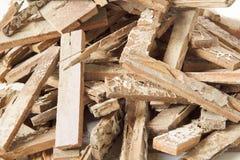 白蚁棕色木条地板损坏的堆 免版税图库摄影