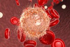 白血病细胞的破坏 免版税库存照片
