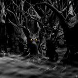 黑白被困扰的森林- 皇族释放例证