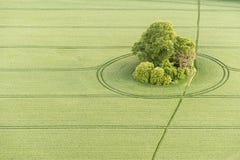 白金汉郡风景鸟瞰图  免版税库存图片