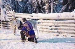 白驯鹿和Suomi人在Ruka在拉普兰在芬兰 库存图片