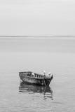 白鹭和木头小船 库存图片