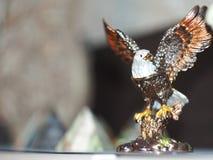 白头鹰美丽的小雕象, piramid bokeh 库存照片