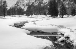 黑白Gran Paradiso国家公园 库存照片