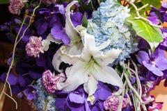 白Lilly、紫罗兰色兰花和蓝色八仙花属开花 库存照片