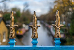 百合塑造了在一座桥梁的锻铁篱芭在摄政的` s运河 免版税库存图片