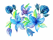 百合玫瑰色水彩的剪影花束手拉 库存照片