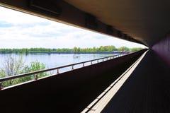 百合的远景在一个隧道的在河的桥梁下 免版税库存图片