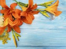 百合美好的橙色季节假日言情绽放蓝色木背景葡萄酒 免版税库存照片