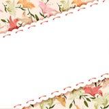 百合花卉背景  免版税图库摄影