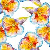 百合花水彩无缝的样式 在白色背景隔绝的明亮的热带花 库存图片