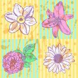 百合,雏菊和上升了,水仙剪影,无缝的样式 库存照片
