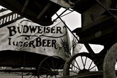 百威Hager啤酒由打谷机的无盖货车盖子 免版税库存照片