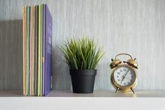 百科全书书、植物和闹钟在白色架子 免版税库存照片