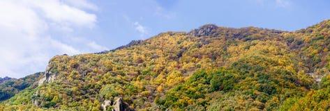 百花山Mountainï ¼ Œ北京五颜六色的山坡  图库摄影