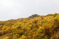 百花山Mountainï ¼ Œ北京五颜六色的山坡  免版税库存照片