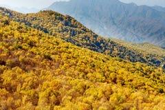 百花山Mountainï ¼ Œ北京五颜六色的山坡  免版税库存图片