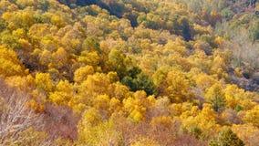 百花山Mountainï ¼ Œ北京五颜六色的山坡  库存照片