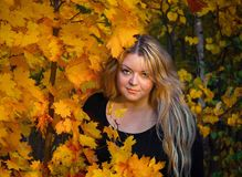 35年的一个少妇在槭树背景的秋天森林离开 免版税图库摄影