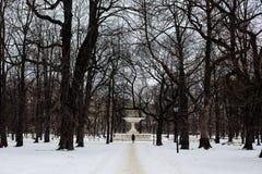 的人走沿雪道的长的远距照相观点在一个公园在华沙,波兰,无树留下所有  免版税图库摄影