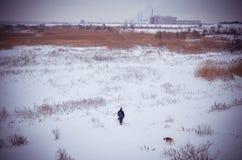 冻结的冬天斯诺伊风景Vacaresti三角洲布加勒斯特 免版税库存照片