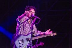 从活的十东的史蒂夫Lukather 免版税库存照片