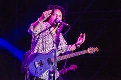 从活的十东的史蒂夫Lukather 库存图片