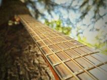 3的古典吉他关闭 免版税库存照片