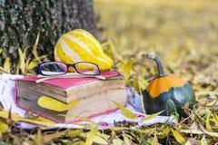 读的和饮用的咖啡在秋天停放 免版税库存图片