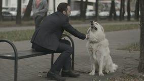 的商人和使用他的狗shakeing的手  股票视频