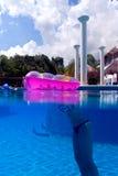 一个游泳池的一个女孩在Playa del Carmen,墨西哥 免版税库存图片