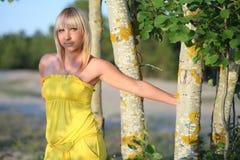 的女孩在树干附近的黄色sundress 库存照片
