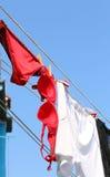 的妇女和停留红色的胸罩的红色内裤烘干 库存照片