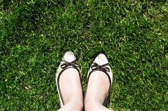 的妇女的米黄鞋子顶视图在绿色被剪的草站立 免版税库存照片