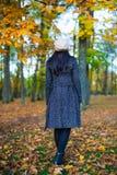 的妇女走在秋天公园的后面观点 免版税库存图片