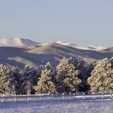 冻结的山风景 免版税库存照片